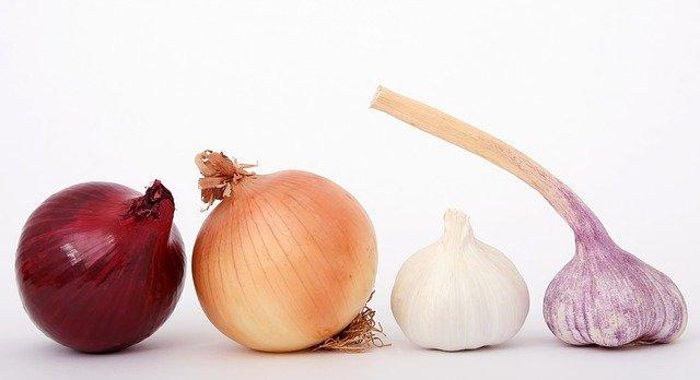 dva druhy cibule a česneku
