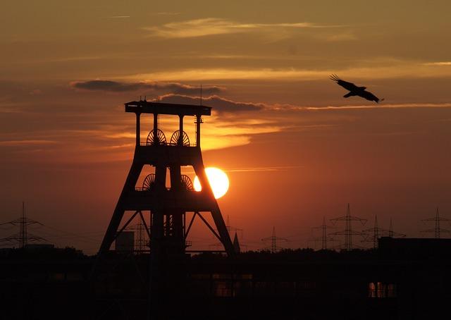 pták u těžní věže